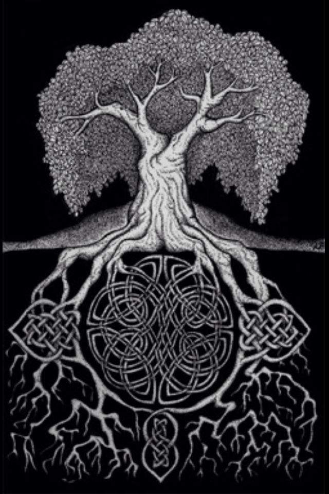 Celtic Knots In Tree Arbre De Vie Celtique Arbre Celtique