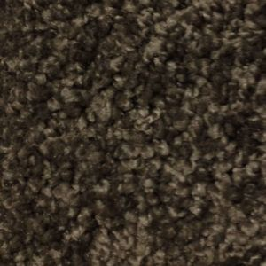 Accolade I Dresden Carpet Flooring In Okc First Step Flooring Stair Runner Carpet Buying Carpet Cheap Carpet Runners