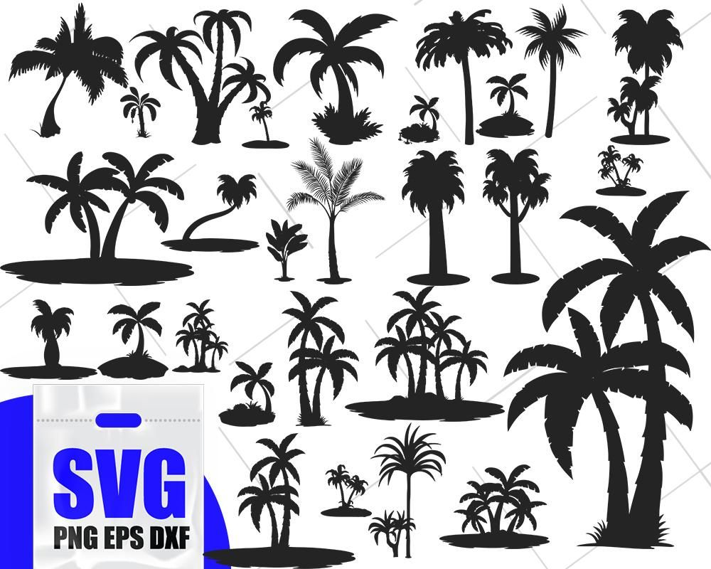 Palm tree svg, summer svg, palm cricut, palm vector, palm