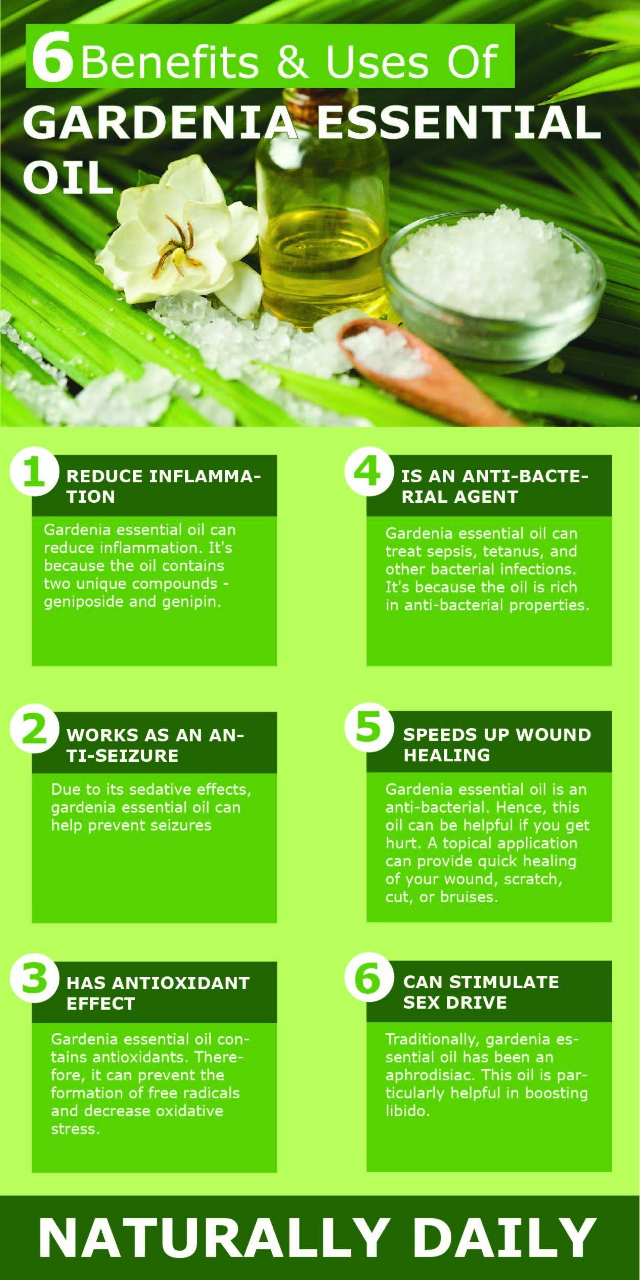 Gardenia Essential Oil Potential Benefits And Uses Gardenia