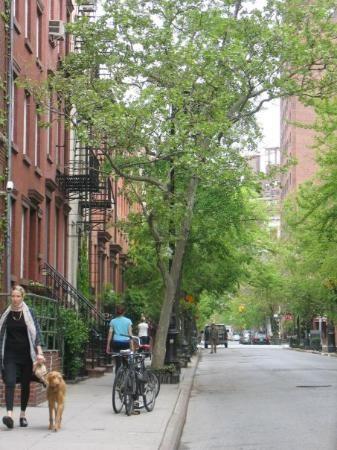 Greenwich Village New York City New York Attractions Greenwich Village New York City