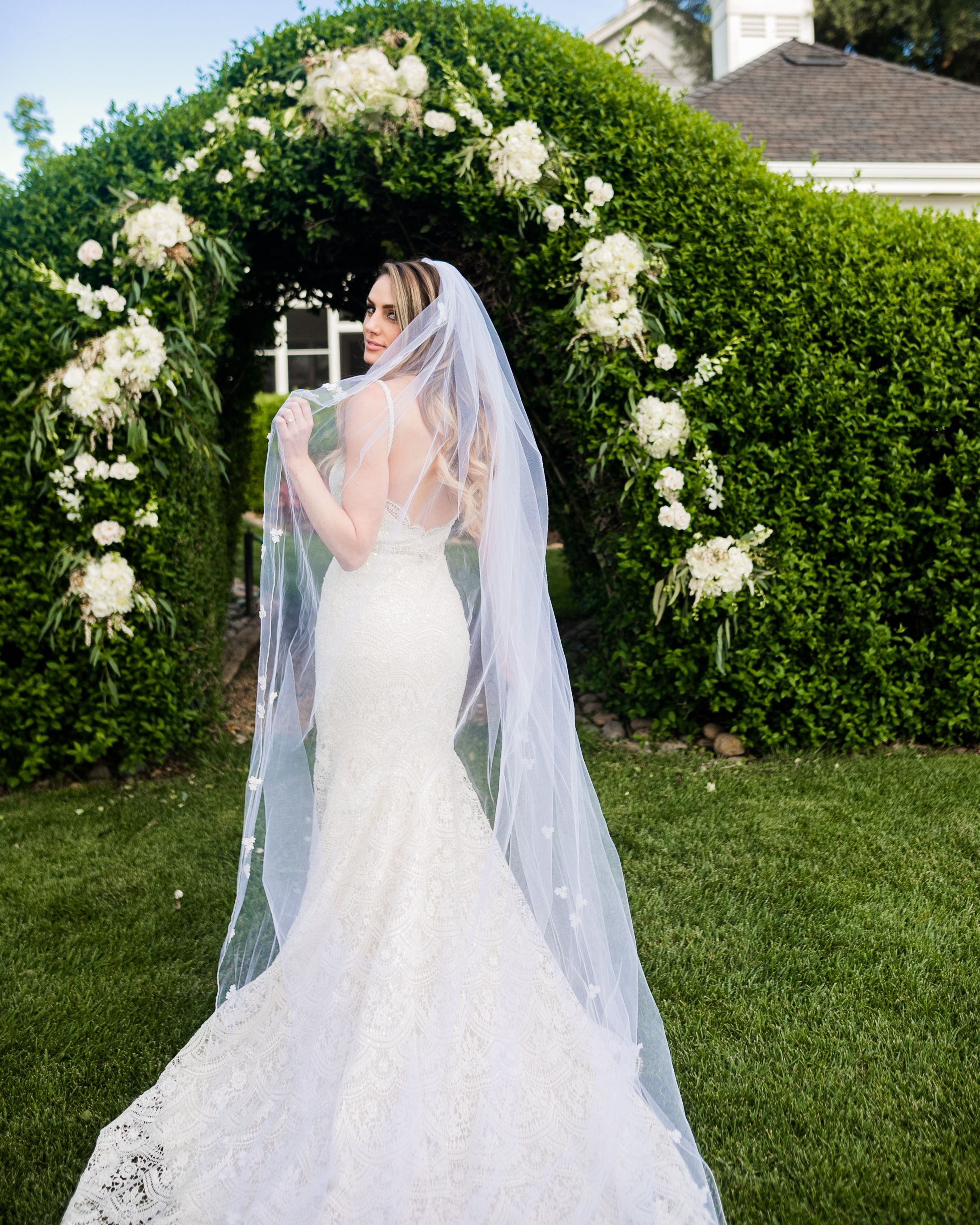 Hydrangea Macrophylla Wedding Gown: Hydrangeas, Roses And Orchids Decorate The Hedge At Oak