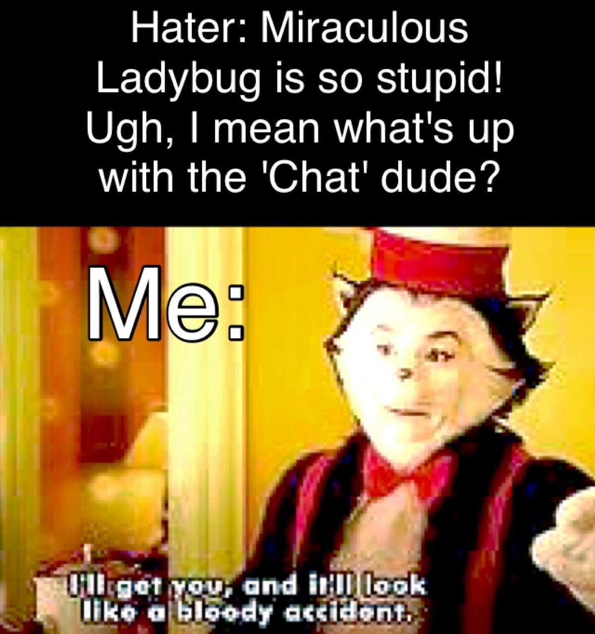 Funny Ladybug Meme : Miraculous ladybug memes pinterest