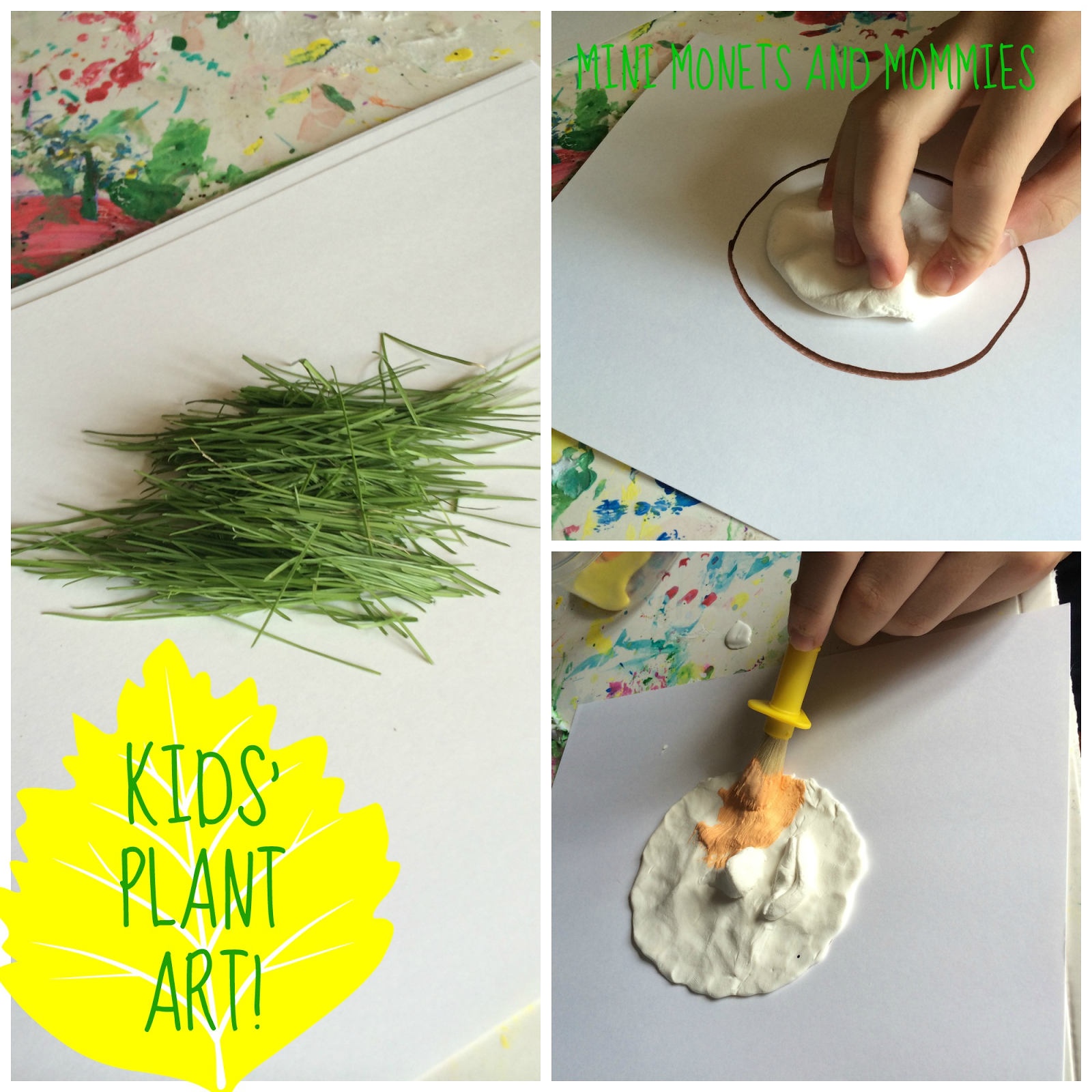 Plants arts and crafts - Plants Arts And Crafts Gallery Of Plants Arts And Crafts