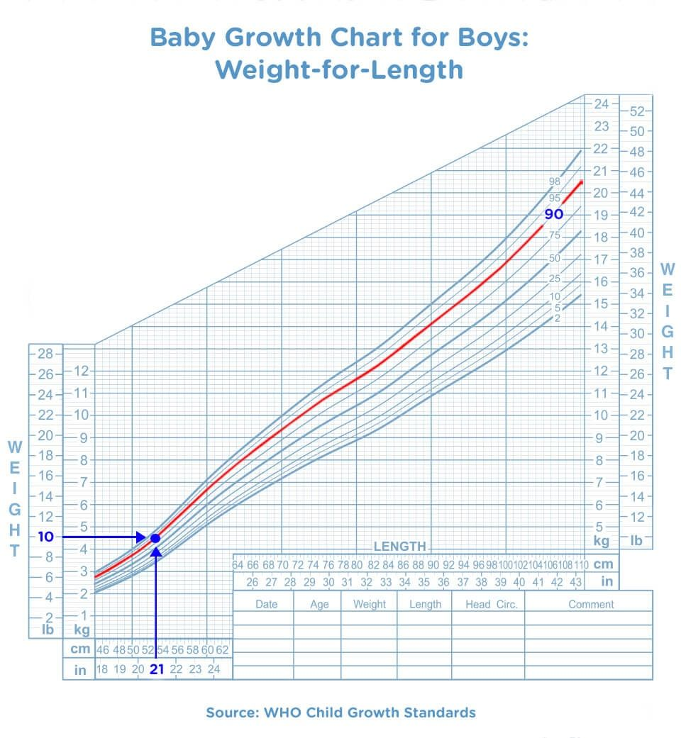 Baby Growth Chart The First 24 Months Pampers Com Baby Growth Chart Baby Boy Growth Chart Boys Growth Chart