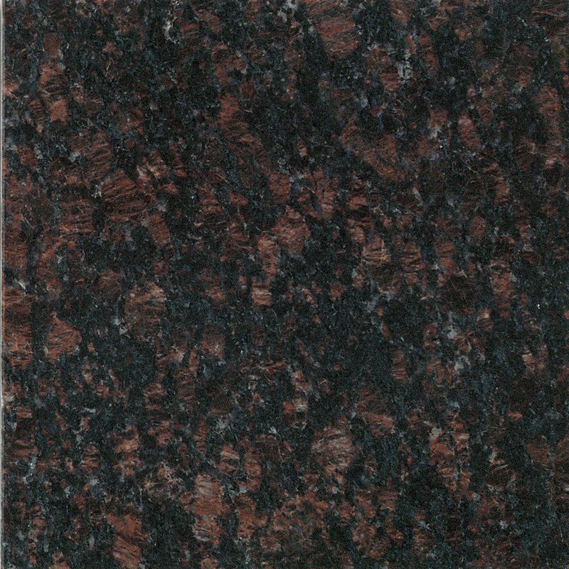 Daltile G289 24241l Sample 24 X 24 Tan Brown Polished Stone