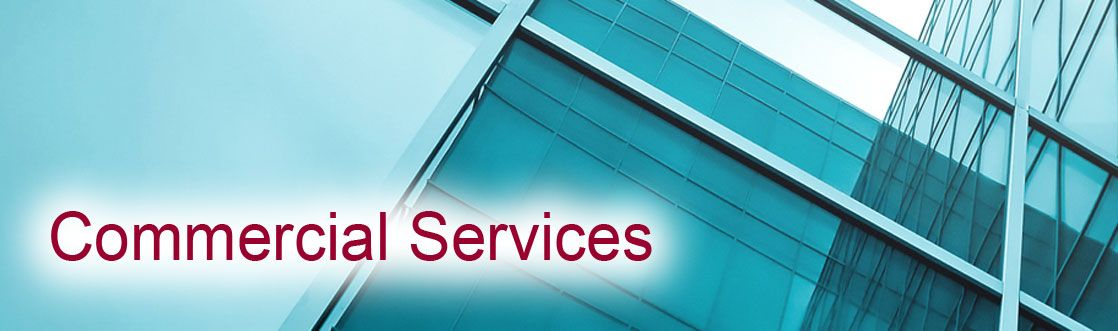 Mister Kleen provides professional Janitorial Services to