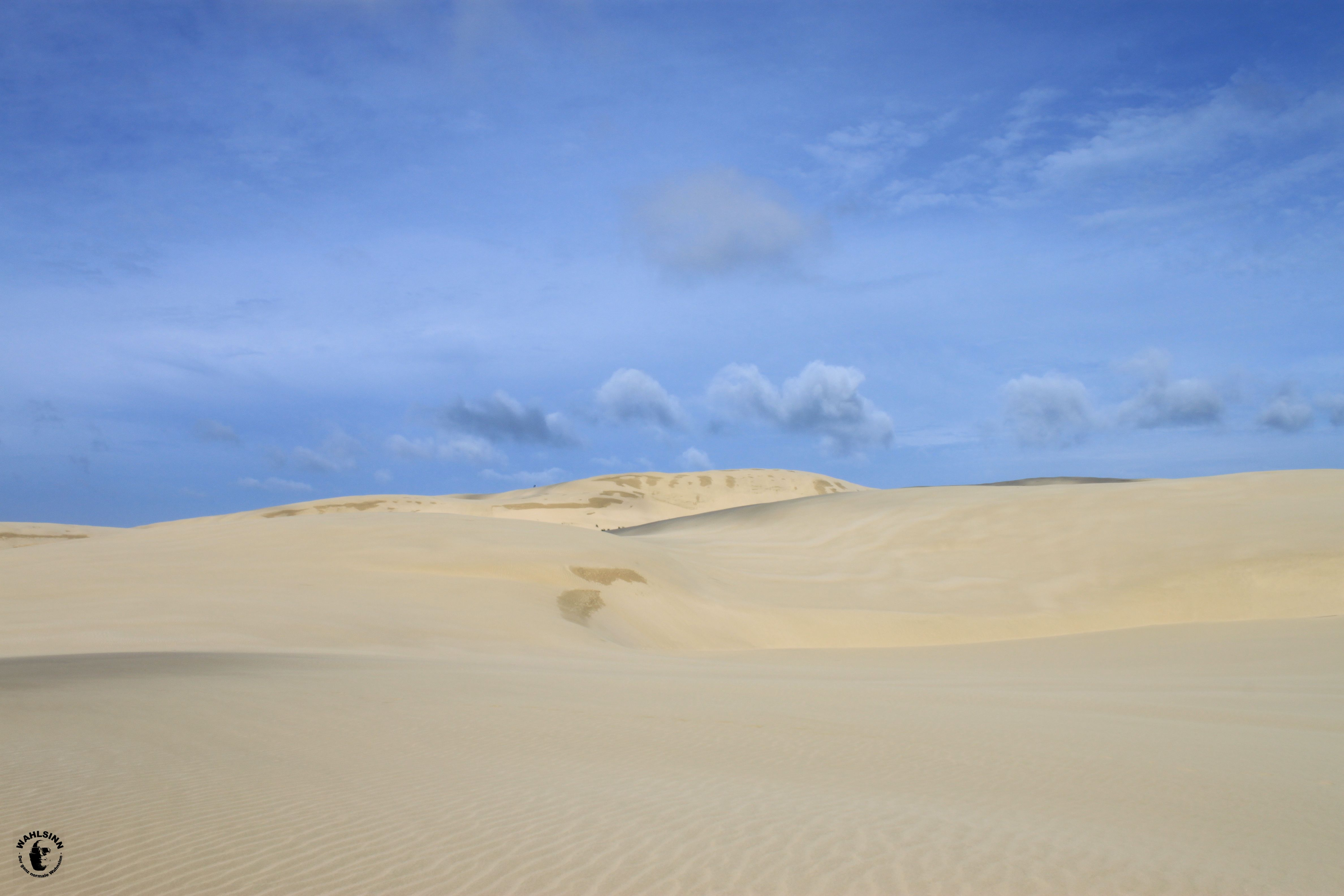 Sandboarden in Neuseeland