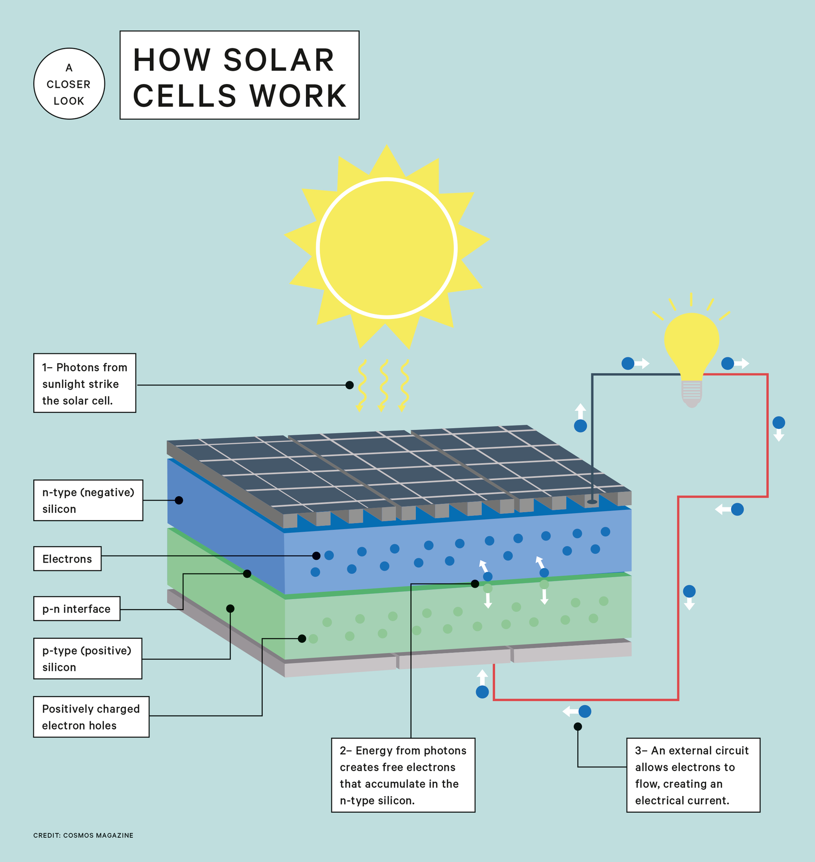How Solar Cells Turn Sunlight Into Electricity Cosmos Magazine Solar Cell Solar Projects Best Solar Panels