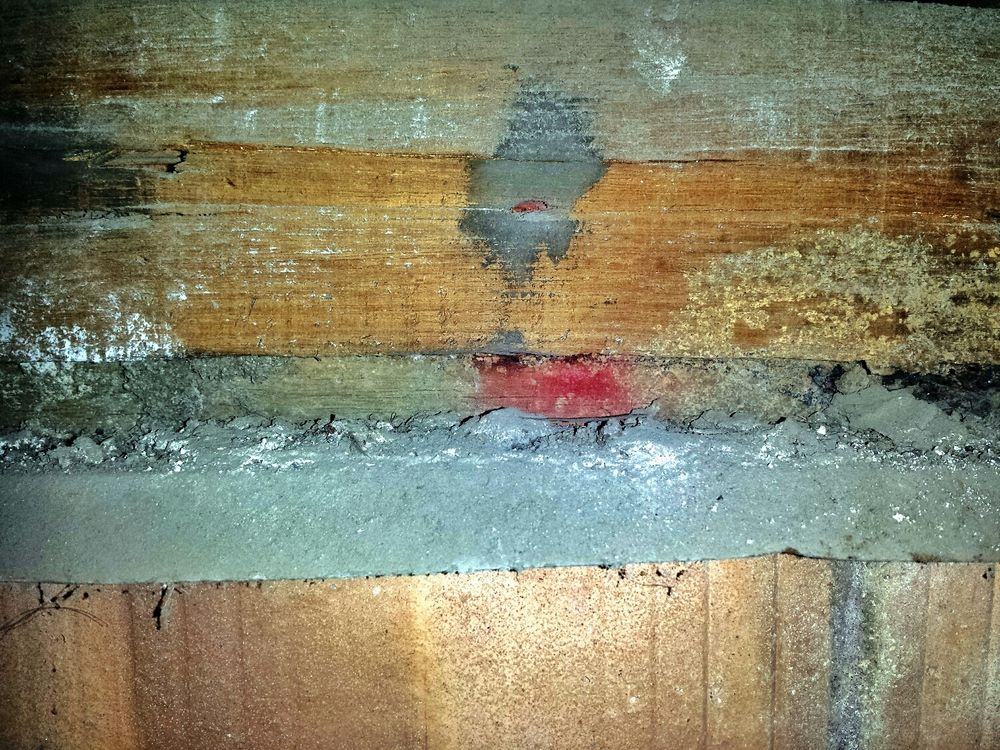 Hidden dangers of previous treatments termites termite