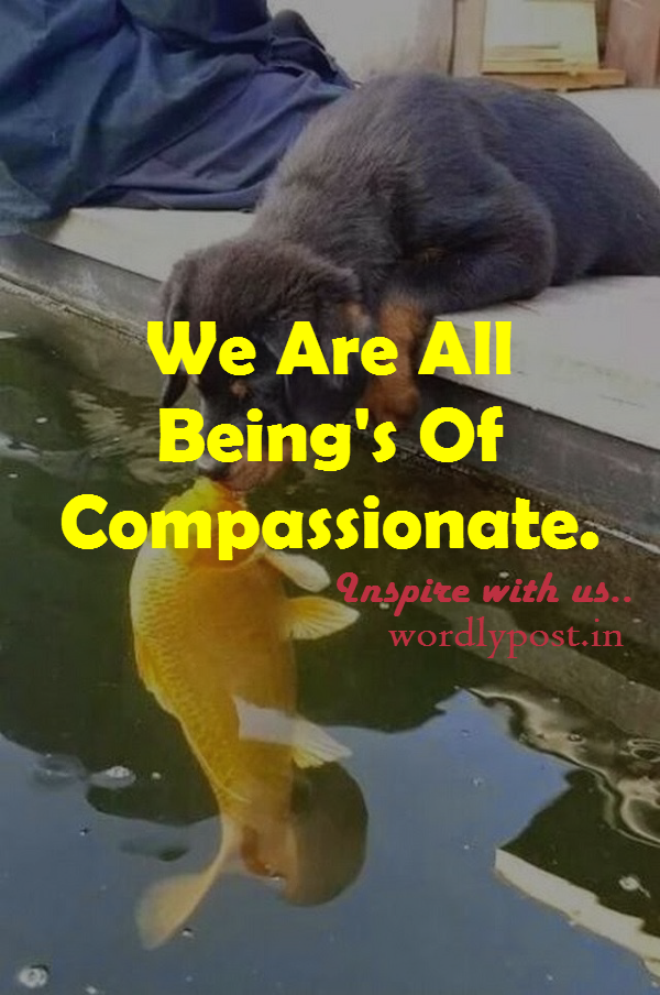 Being Compassionate !!!