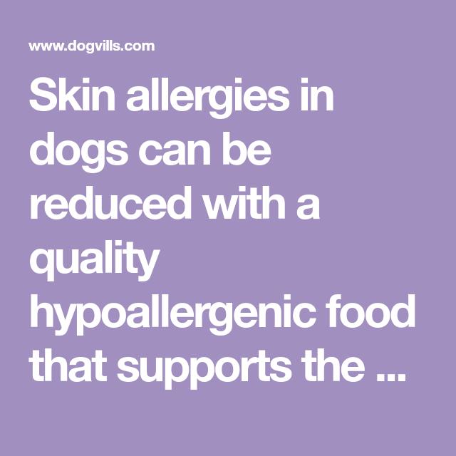 Skin Allergies & Hypoallergenic Dog Food Choices