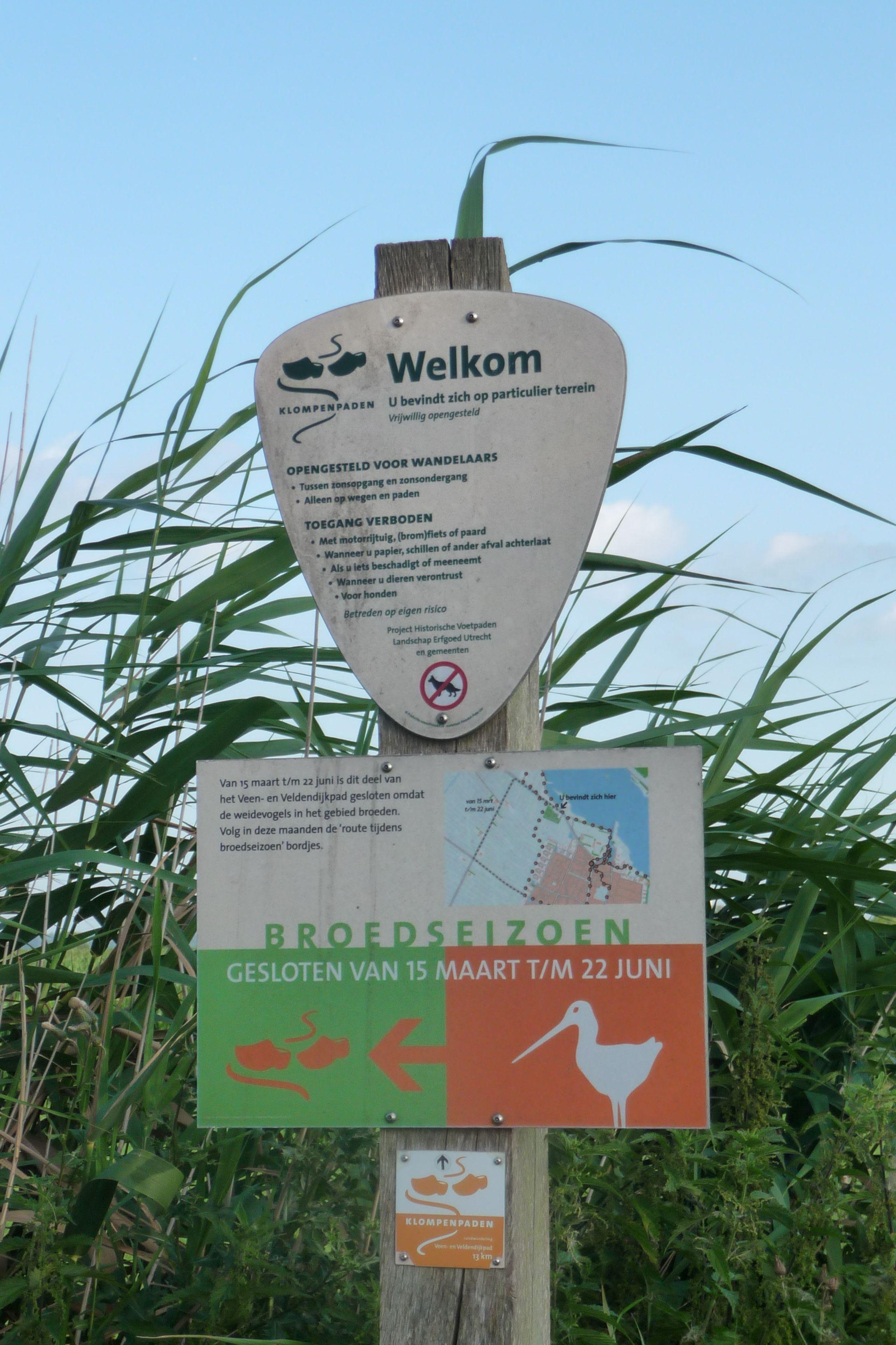 Wandelen door het stiltegebied, aangrenzend aan park Wijdland.