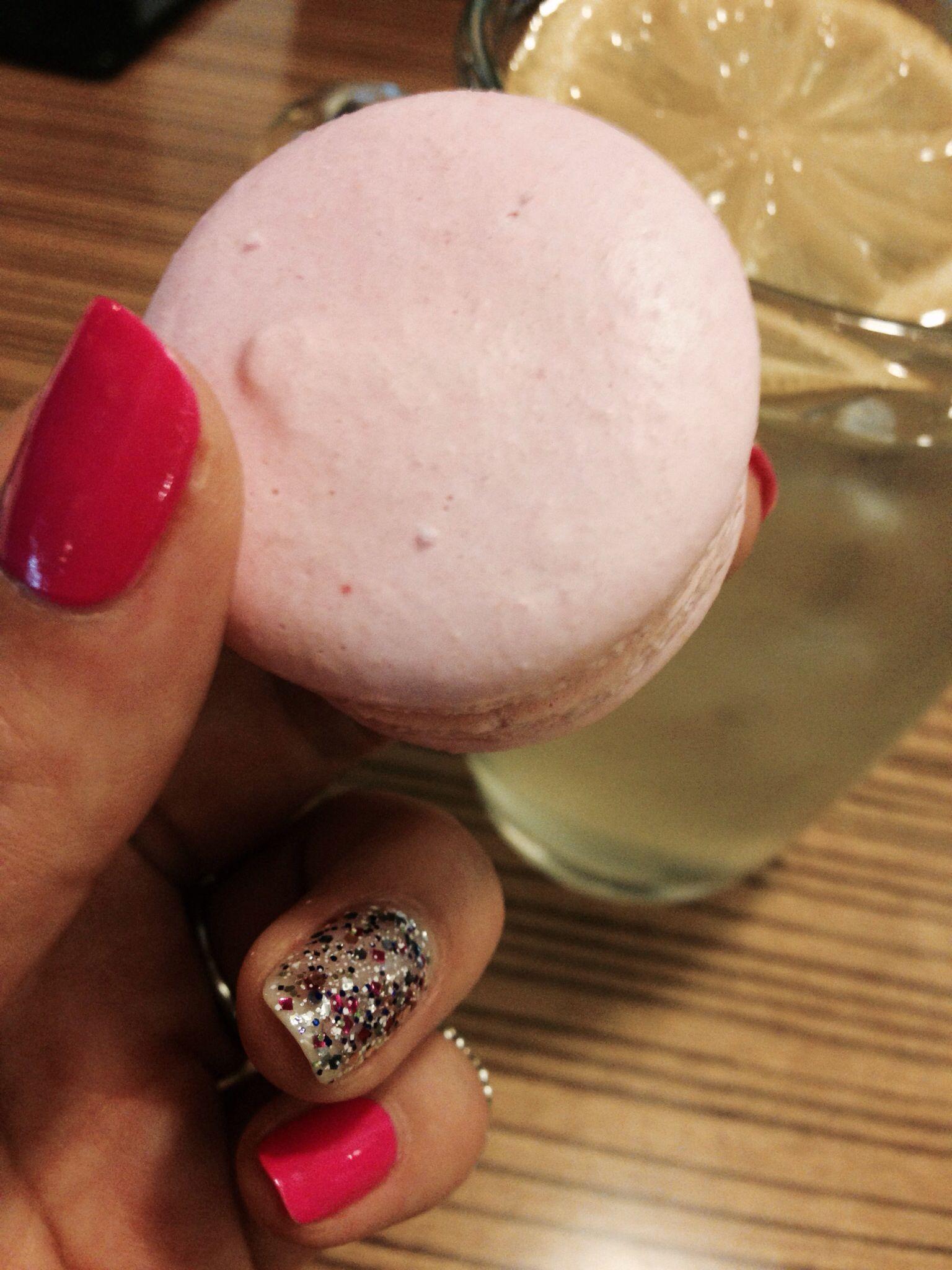살찐고양이 pink