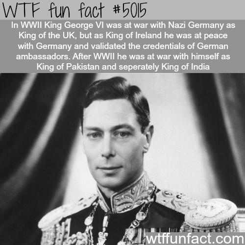 WTF Facts : funny, interesting & weird facts | Fun Facts ...