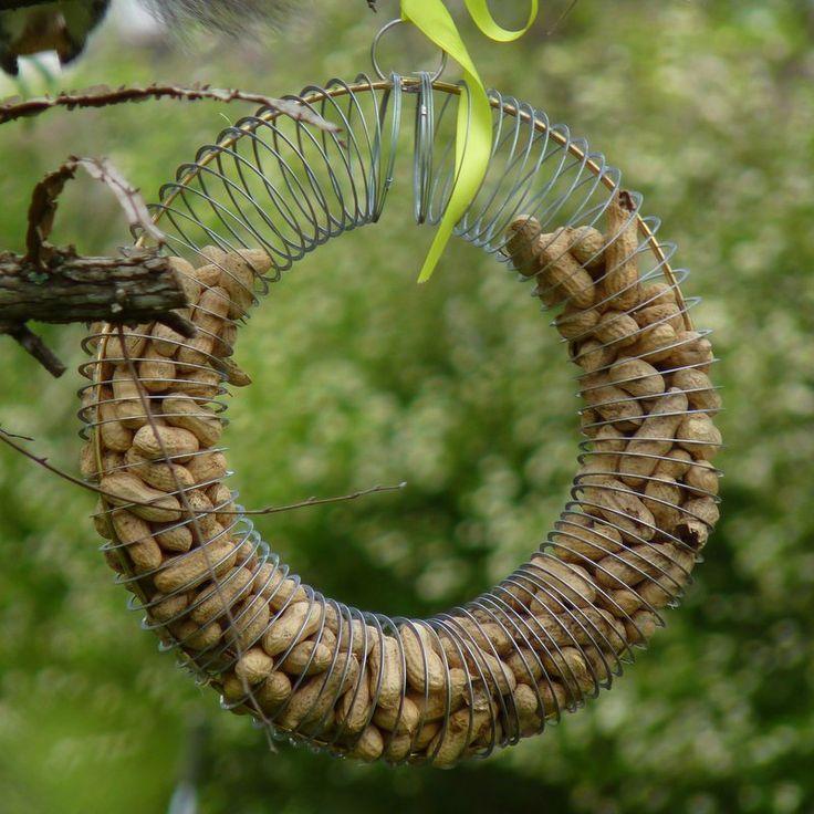 Diy Bird Feeders Slinky Diy Bird Feeder For Peanuts Bird Feeders Peanut Bird Feeder Diy Birds