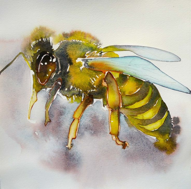 amazing insects art paintings - Google Search