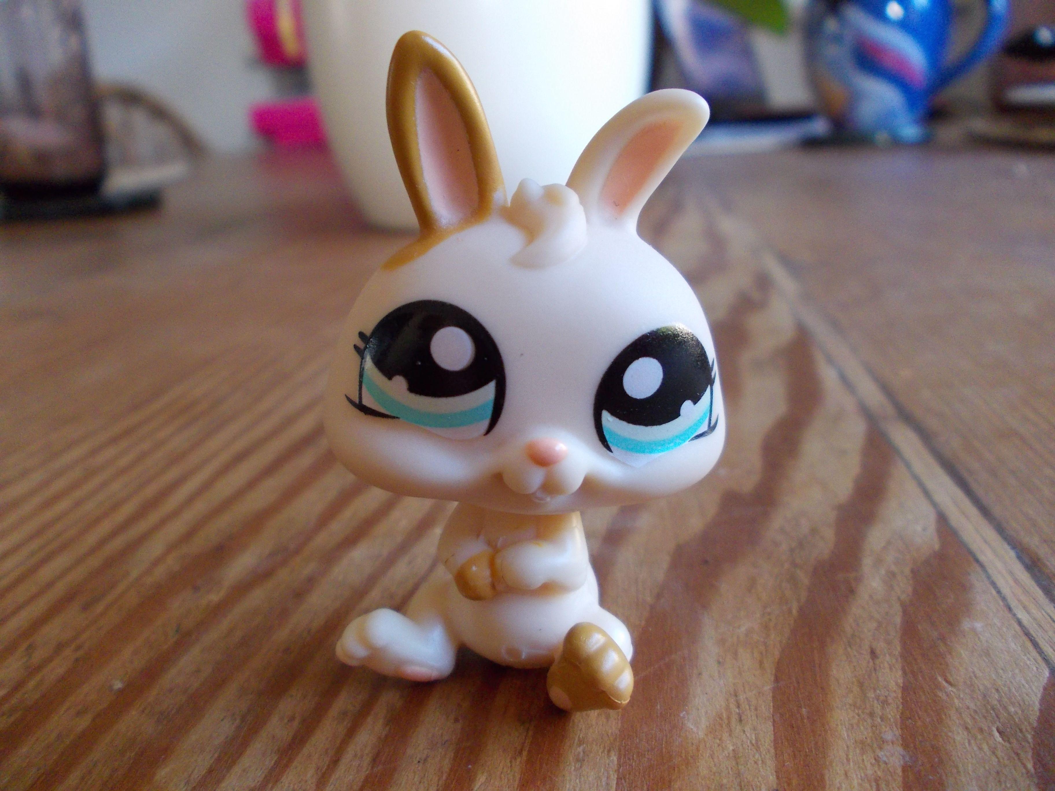 This is my Littlest Pet Shop bunny. Little pet shop