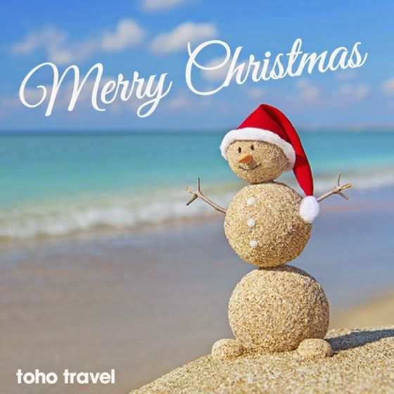 christmas hawaii pictures 南太平洋旅行専門店 スタッフブログ・BULA