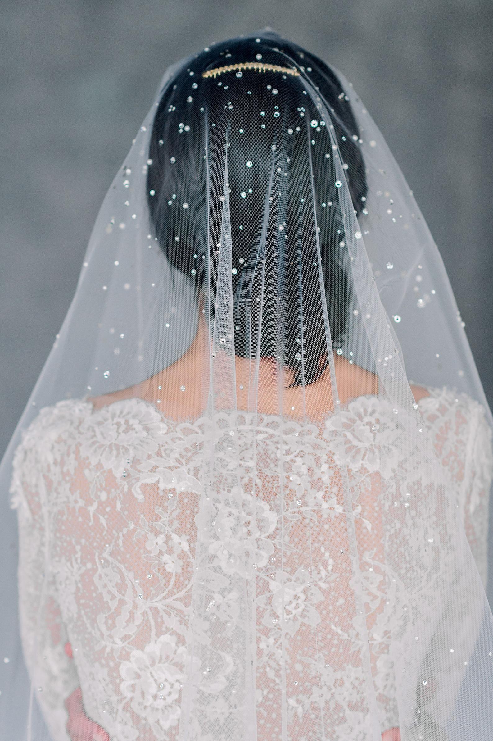 Crystal and pearl veil Pauline