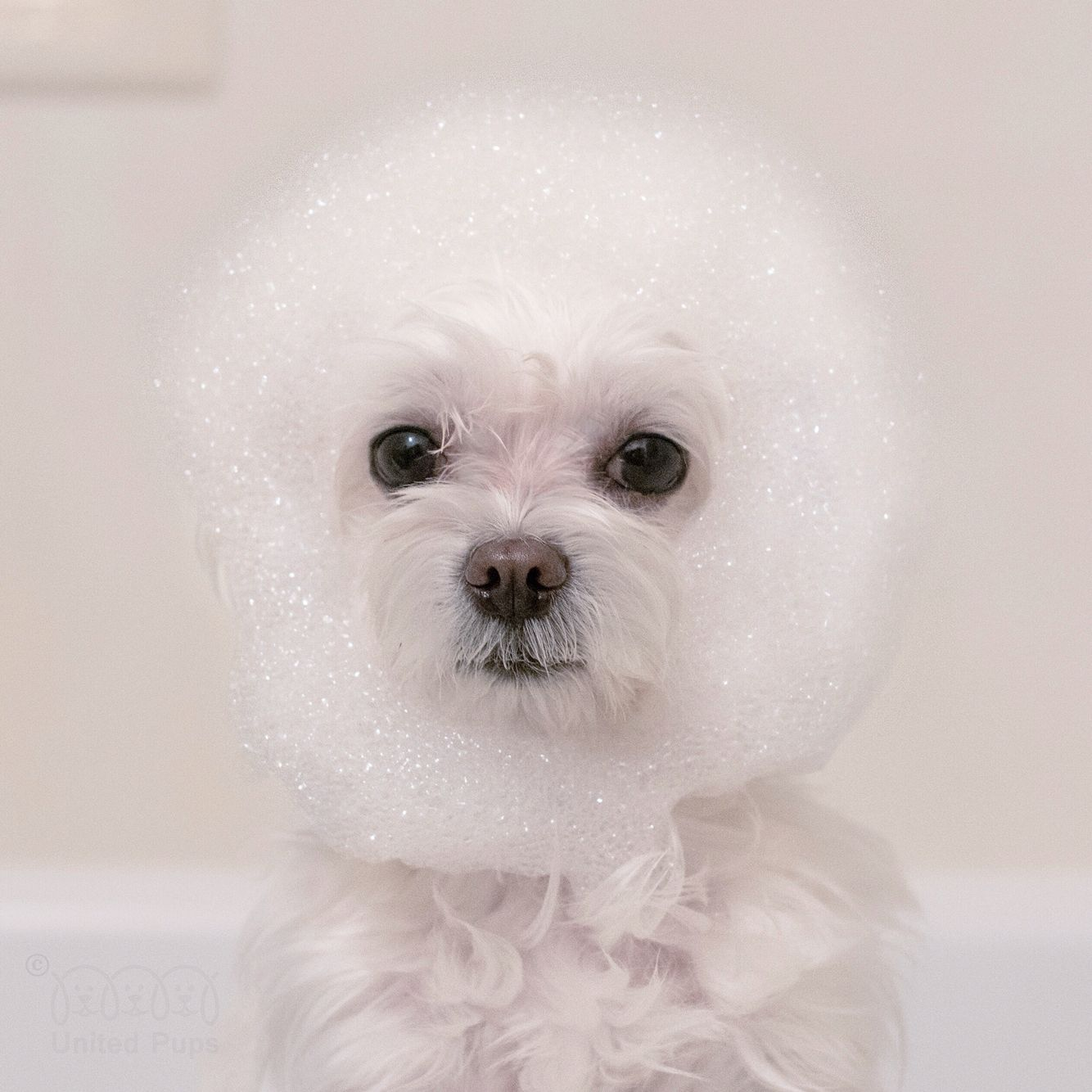 Is This What Happens When You Take A Bubble Bath I Look Like A