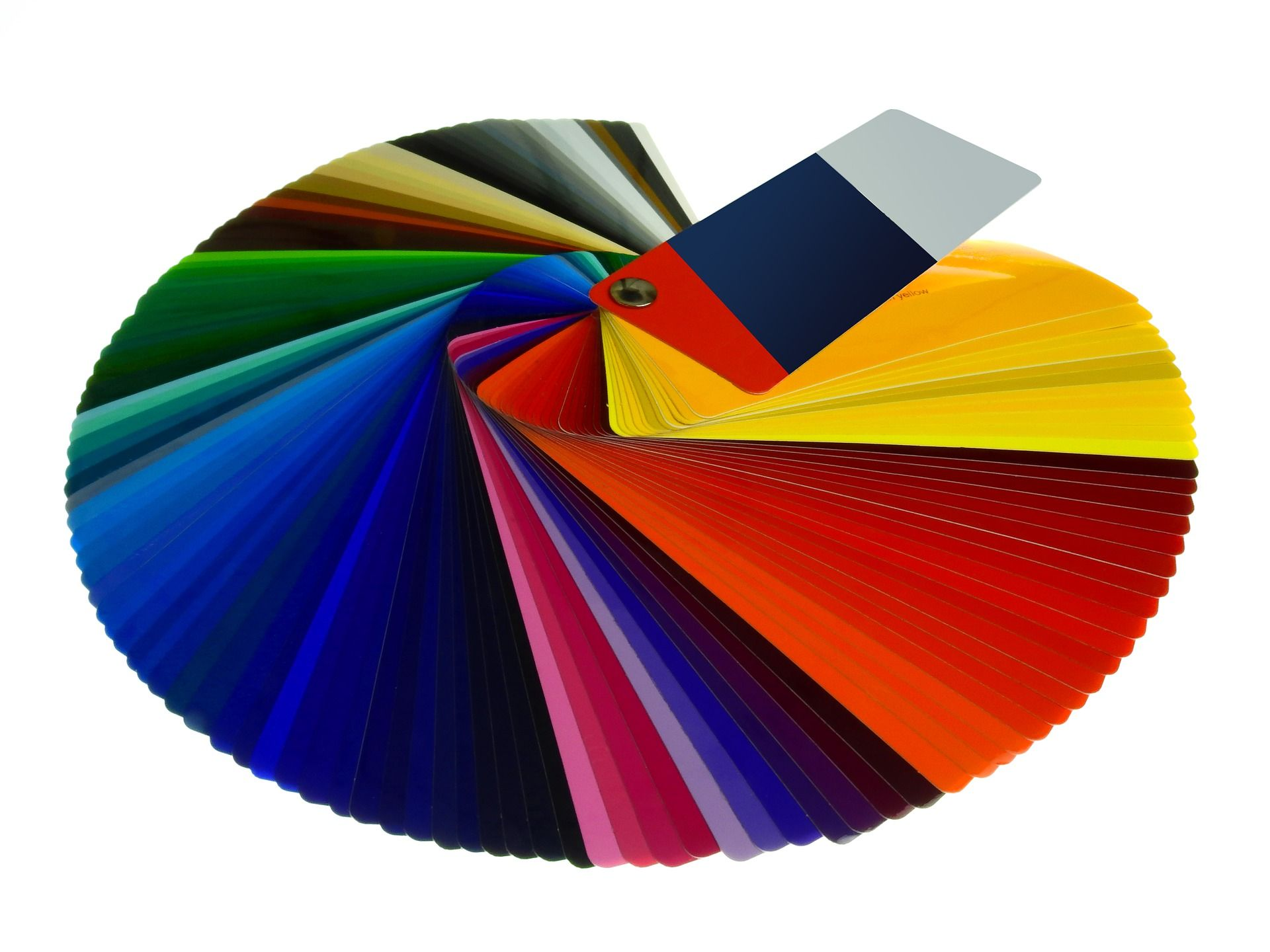 Color Scheme These colors help to create uniformity and harmony in ...