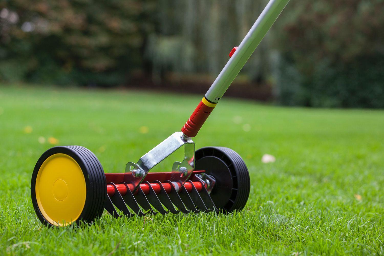 8 conseils pour reprendre son jardin apr s l 39 hiver groupe diogo fernandes - Scarificateur pour pelouse ...