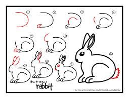 Image result for step by step drawing rabbit
