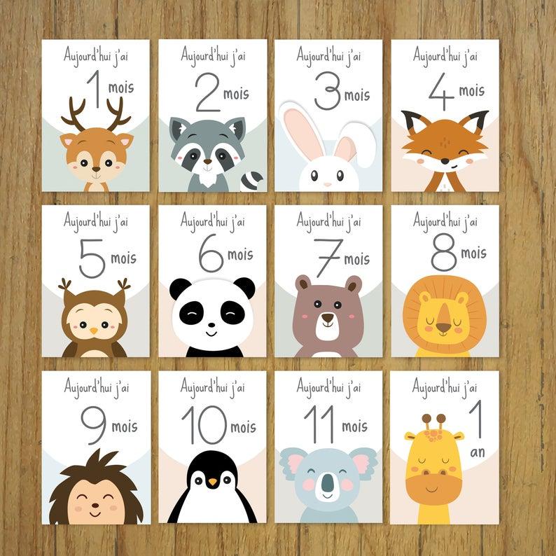 Cartes Etapes Bebe Mois Par Mois Animaux Cadeau Naissance Panda Renard En 2020 Carte Etape Bebe Bebe Mois Par Mois Carte Bebe