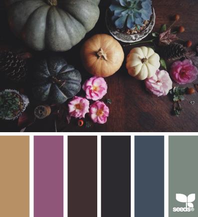 autumn hues   design seeds   Bloglovin'
