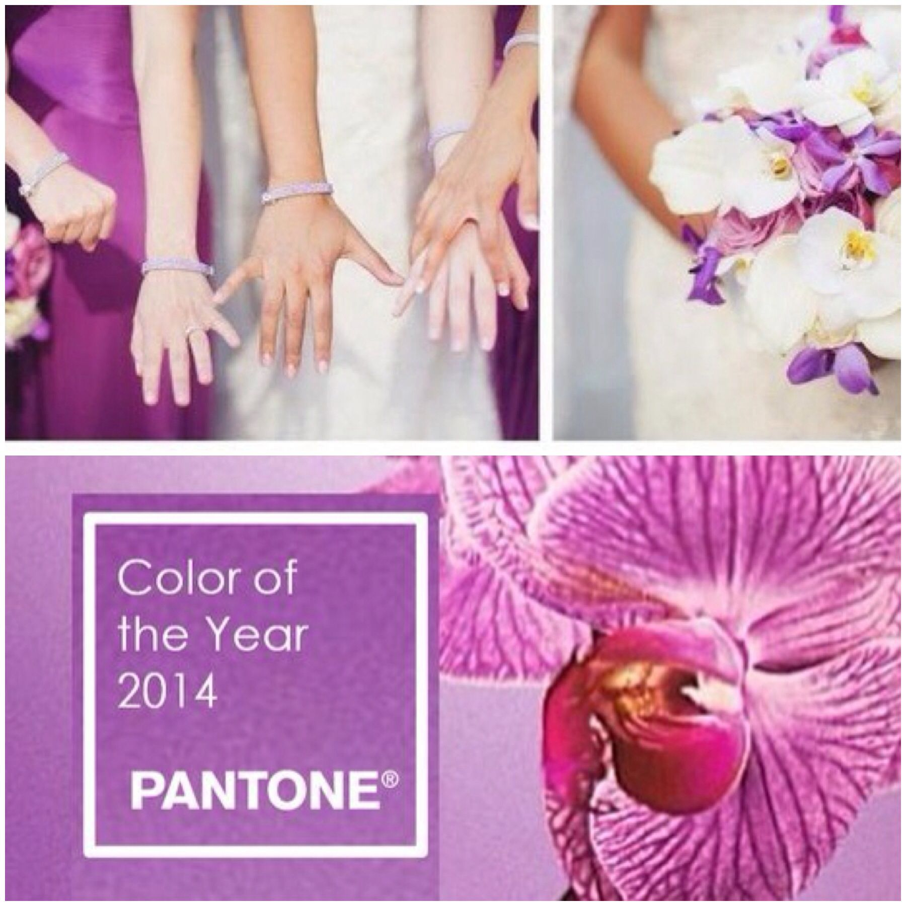 Radiant Orchid Pantone color of the year! Perfect with Jeweliette ...
