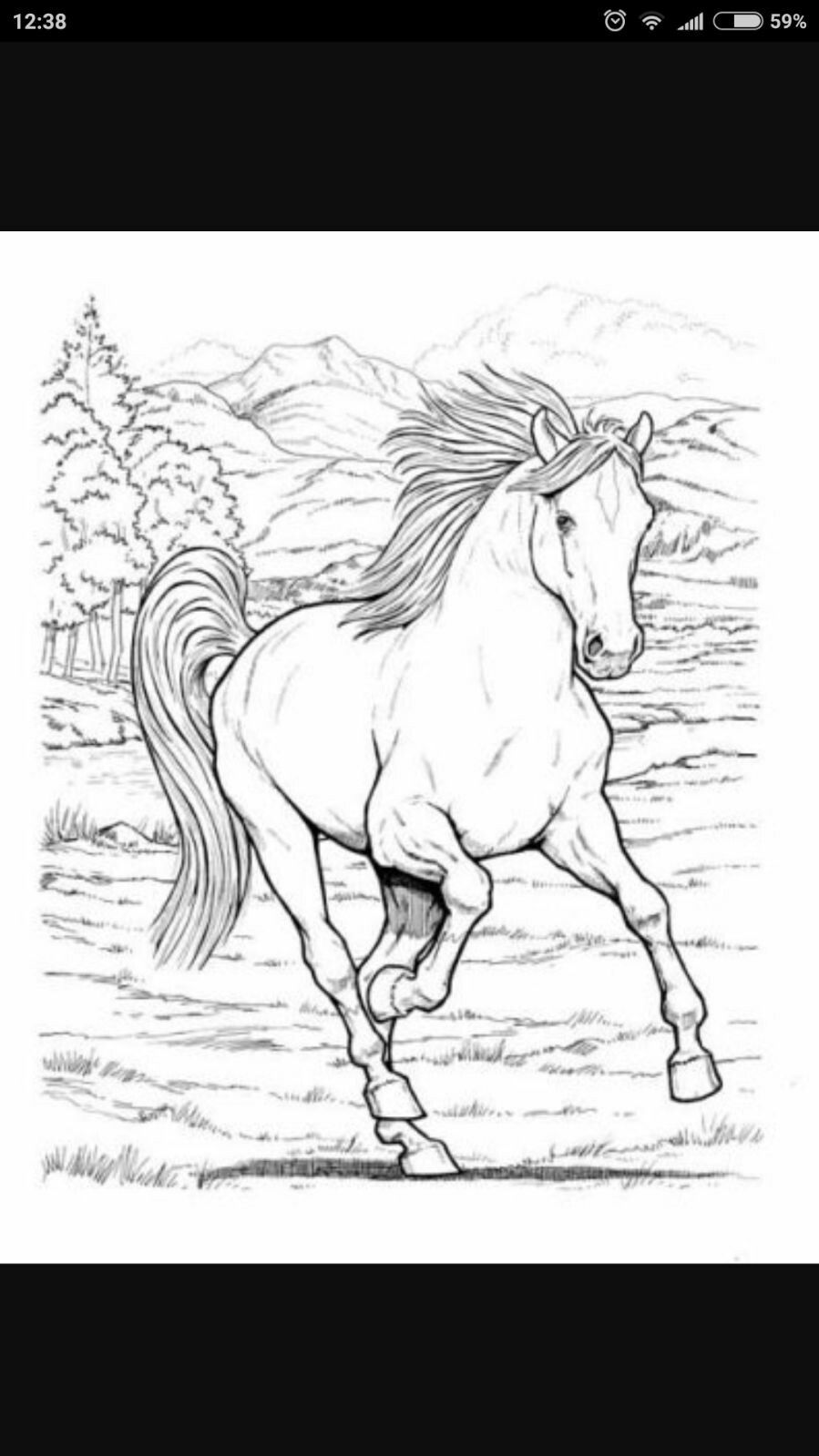 Pin By Nilgun Oksuz On Rolyef Horse Coloring Pages Horse Coloring Free Horses