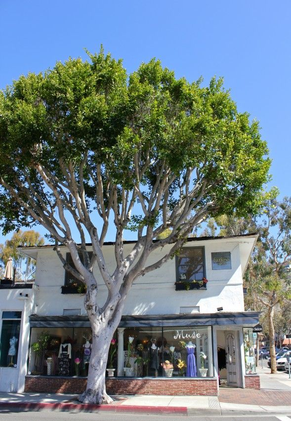 Day Date in Laguna Beach, California What to See, Eat