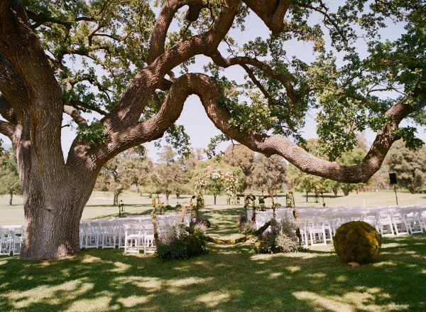 Outdoor Weddings Brazos Valley Wedding Planning: Pin By Ashley Stephens On More Trees Please