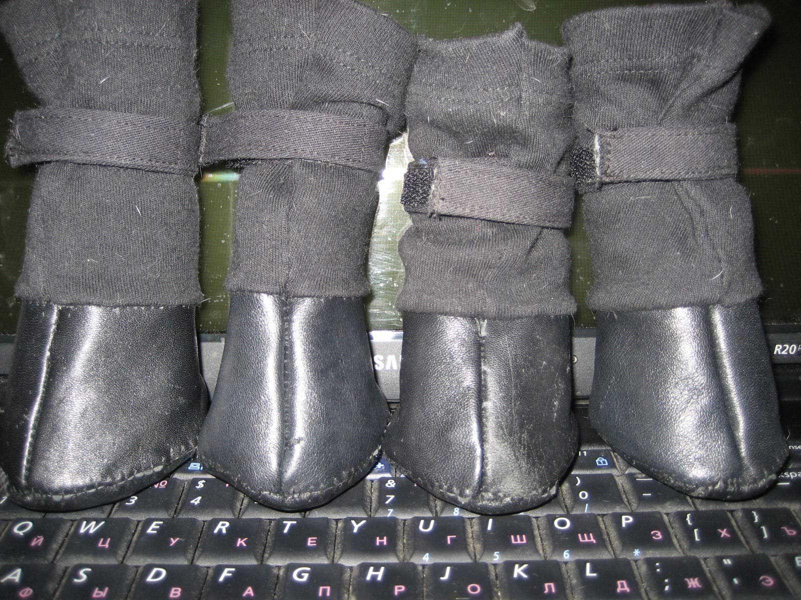 обувь для собак сапожки для собак » Как пошить сапожки для собаки  дома, своими  руками 4a2aaab4b9e