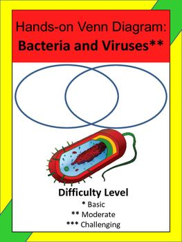 Bacteria and viruses hands on venn diagram activity make venn bacteria and viruses hands on venn diagram activity ccuart Image collections