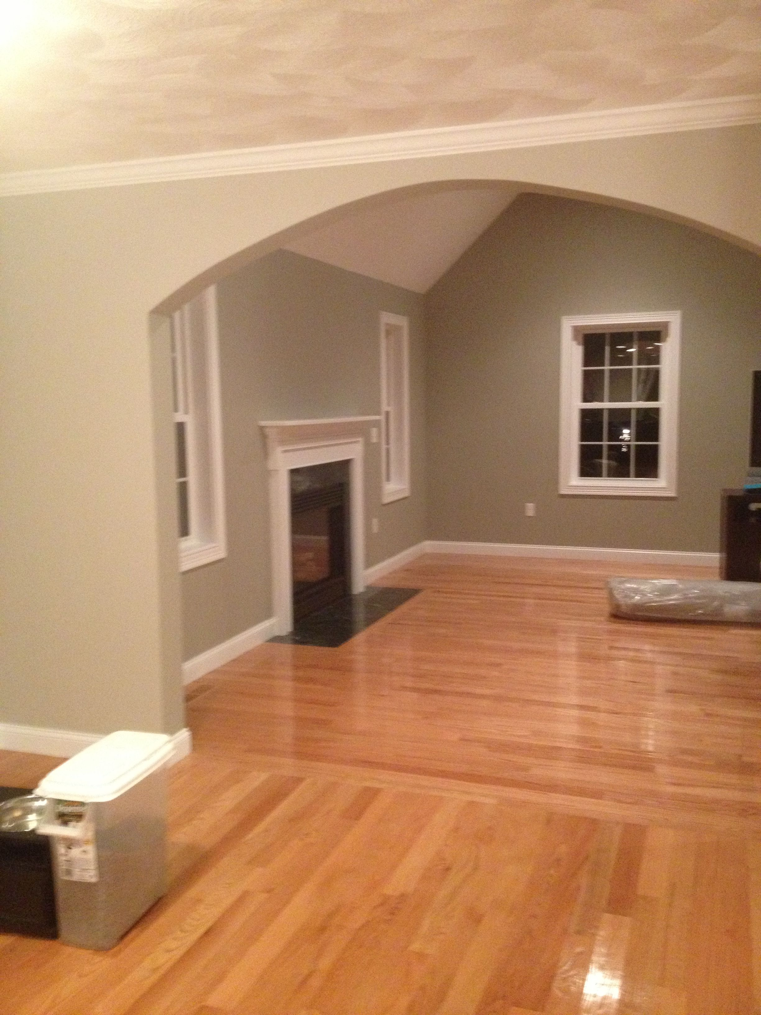 Benjamin Moore Silver Fox And Revere Pewter Living Room Grey