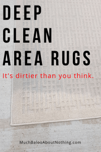 carpet and rug cleaners in Brooklyn