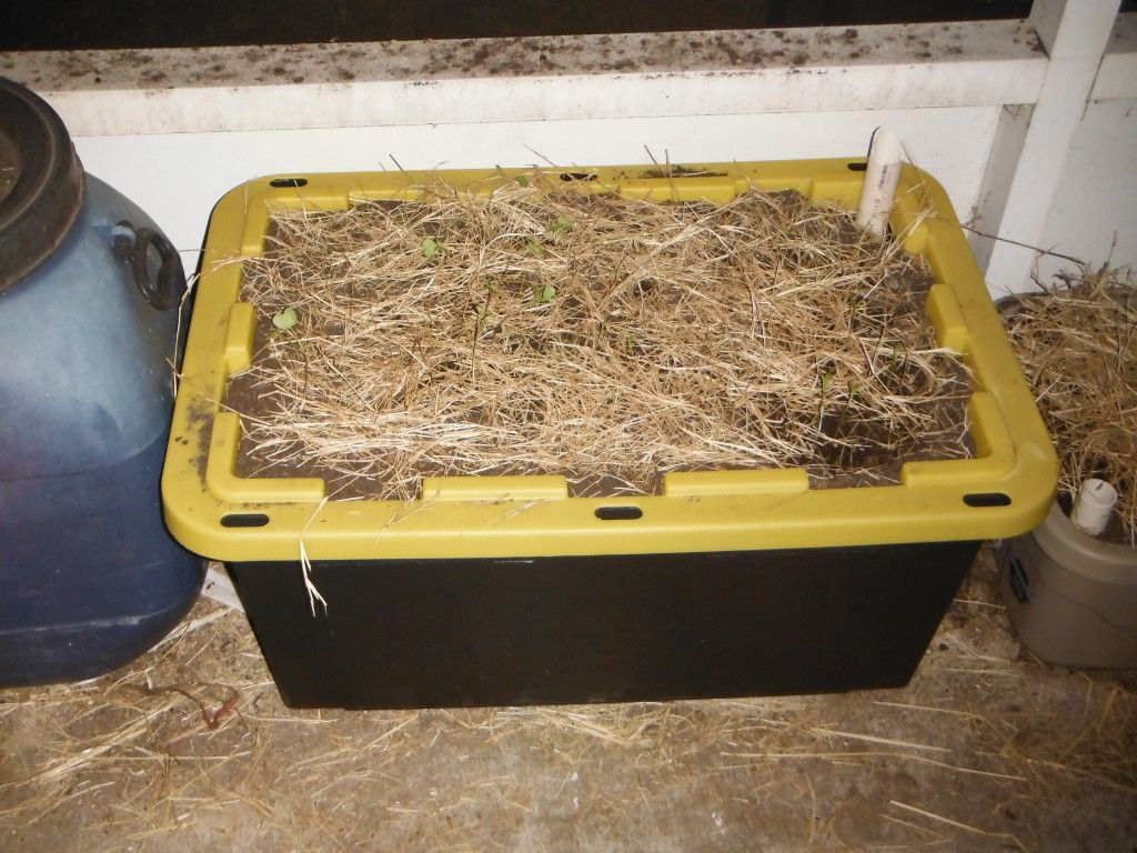 DIY Self Watering Planter from sturdy storage tote. Can ...