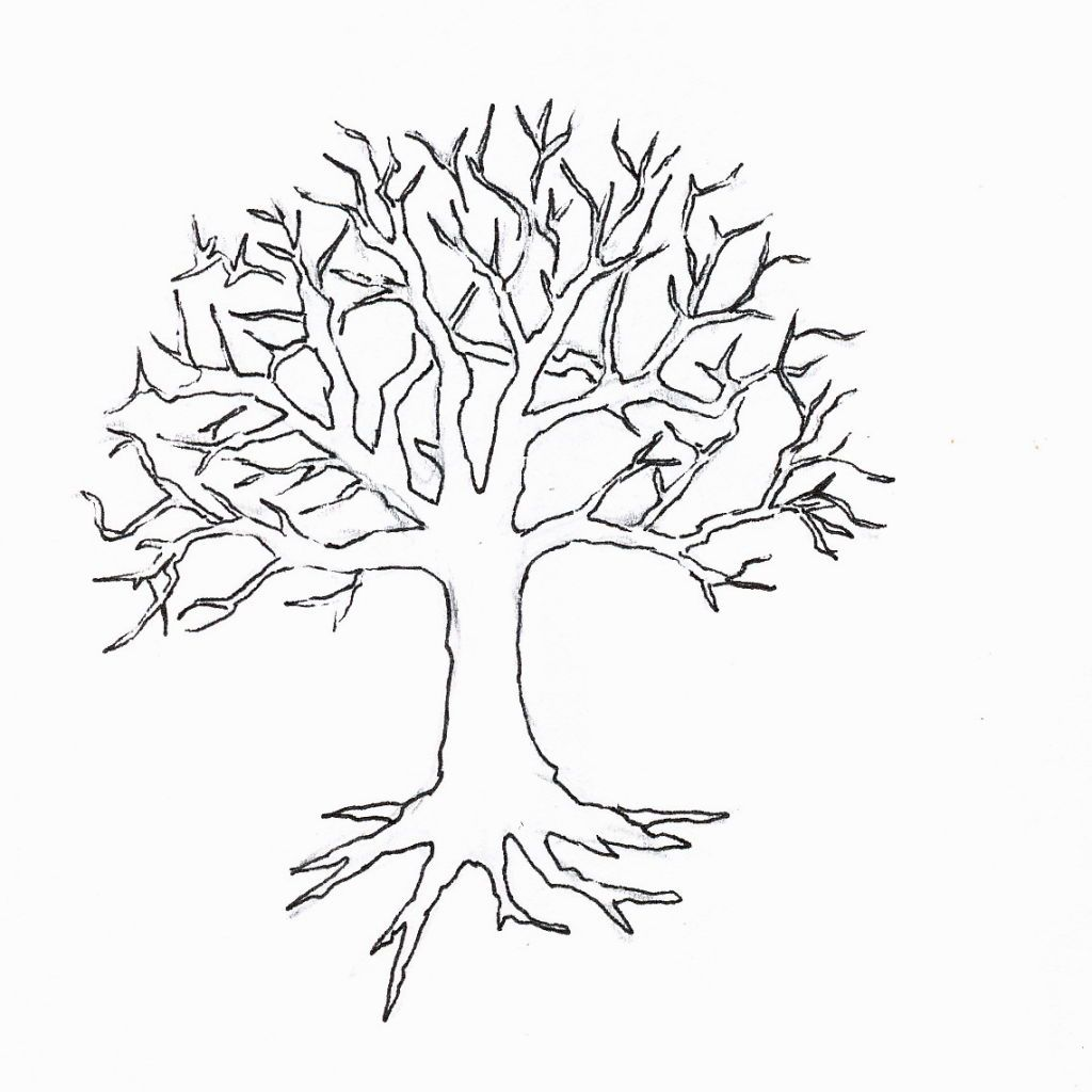 Winter Tree Coloring Page Tree Drawing Tree Coloring Page Tree