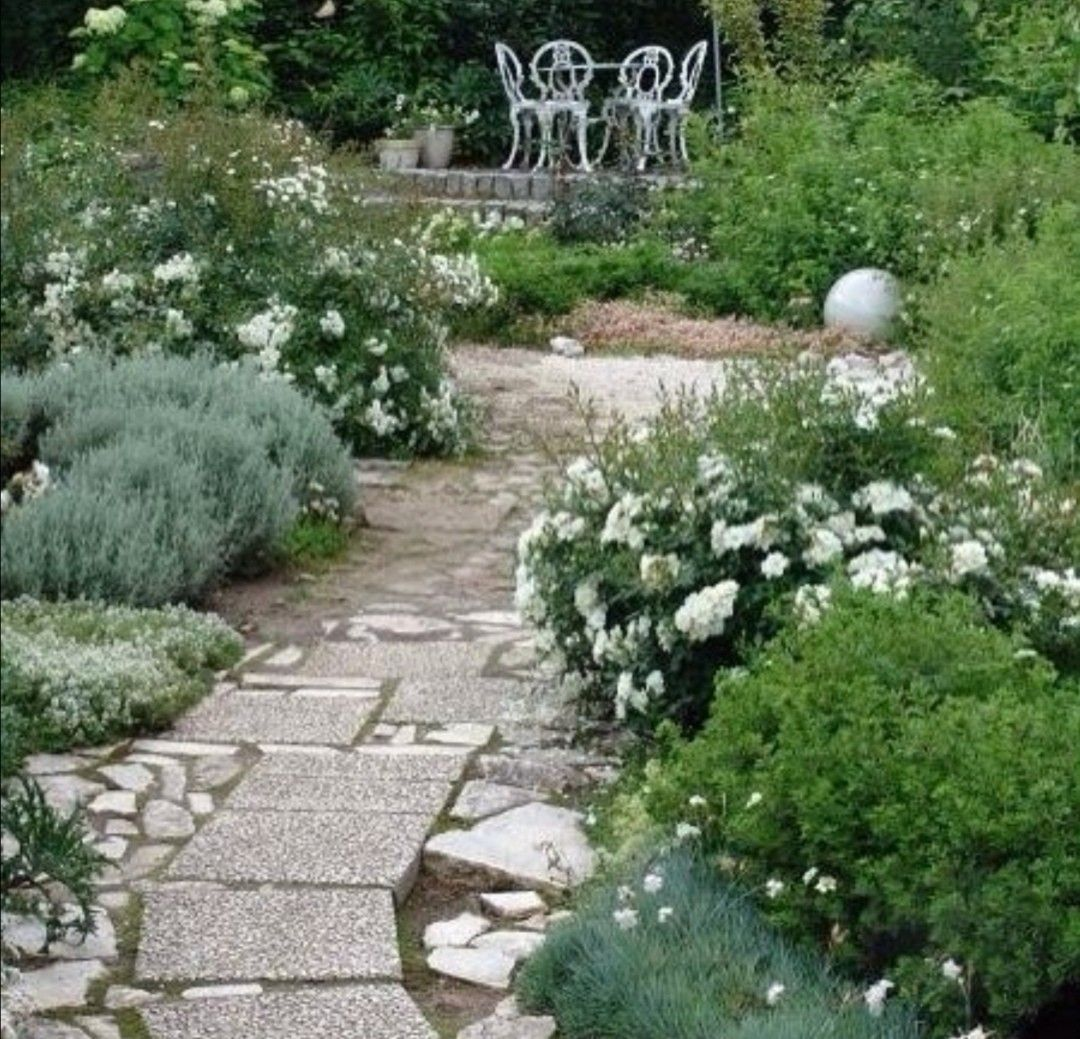 Pin By Maisaliina On Jardin In 2020 White Gardens Outdoor Gardens Gorgeous Gardens