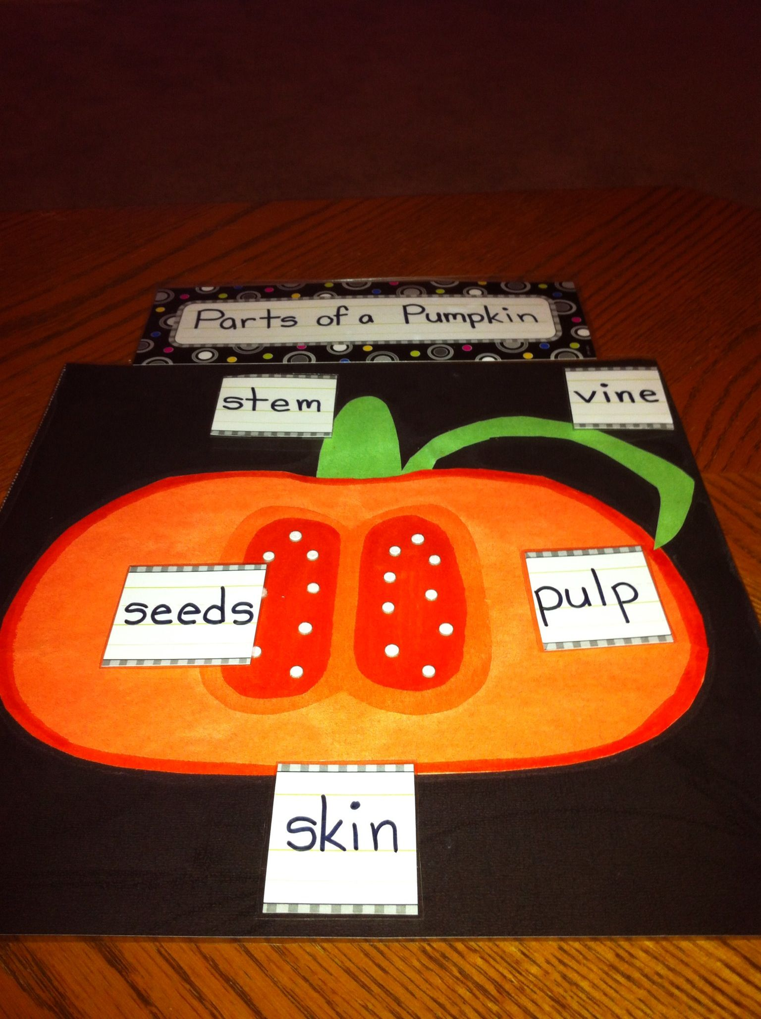 Parts Of A Pumpkin Poster Preschool