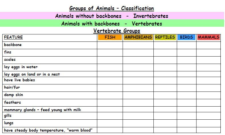 Animal Classification Printables Classification Of Animals
