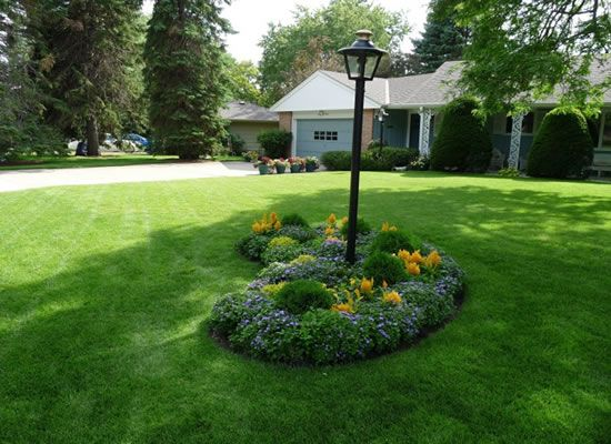 Simple front gardens house decor ideas gardening for Basic landscape design