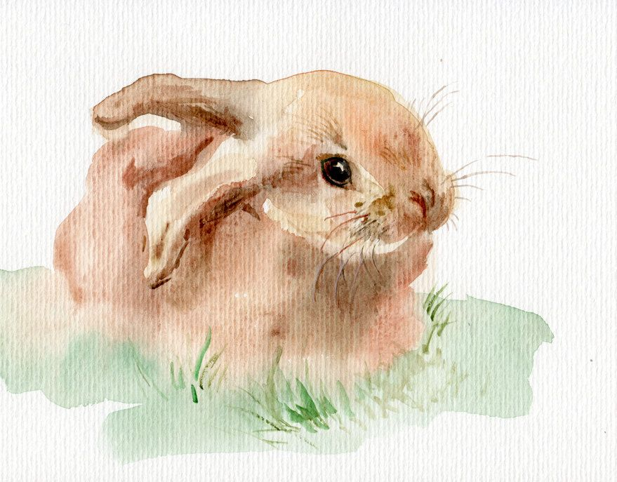 Bunny WATERCOLOR original Cute little rabbit painting
