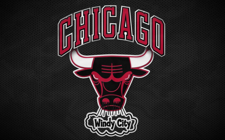 chicago bulls logo photos