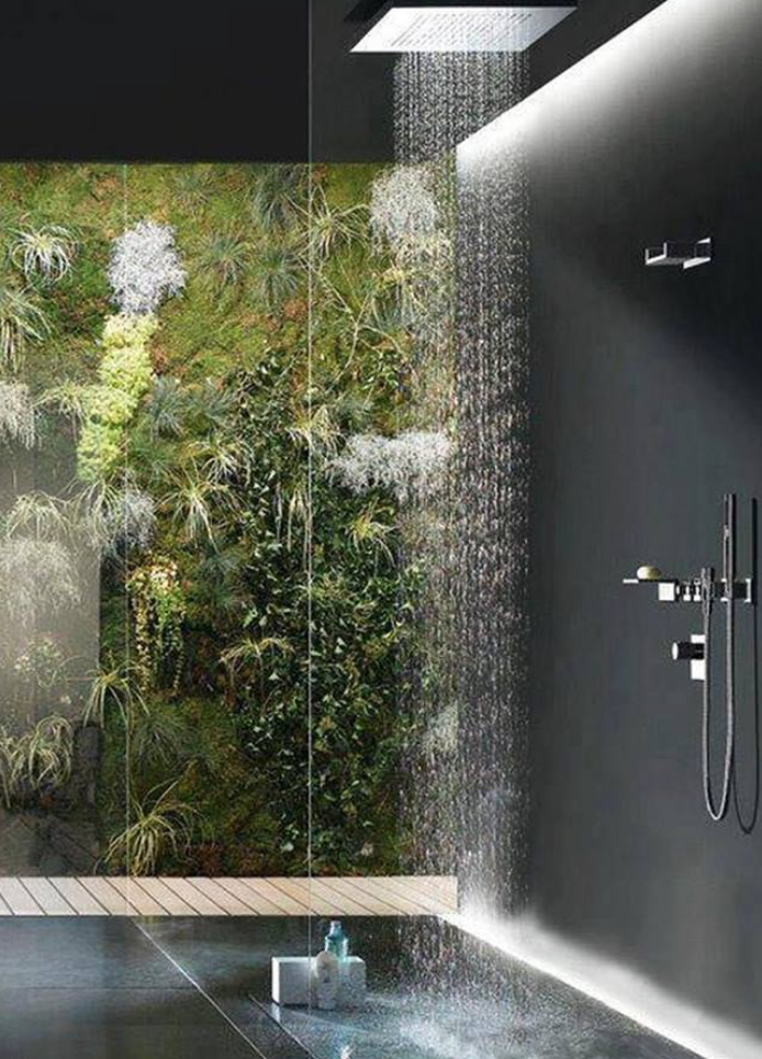 Rain Forest Bathroom With Images Dream Bathrooms Amazing