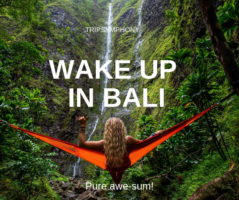 BALI SUMMER BREAKS Wake up to this view in Bali, pure awe-sum!  #tripsymphony #balinese #bali #baliindonesia #balilife #denpasar #taksu #gadisbali #indonesia #cantik #ubud #infodenpasar #like #kuta #jegegbali #baliisland #jegeg #balitrip #art #infobali #travel #balidaily #balinesegirl #cantikbali #taksubali #balilivin #balitravel #culture #baliguide #kebayabali #vacation #destinations