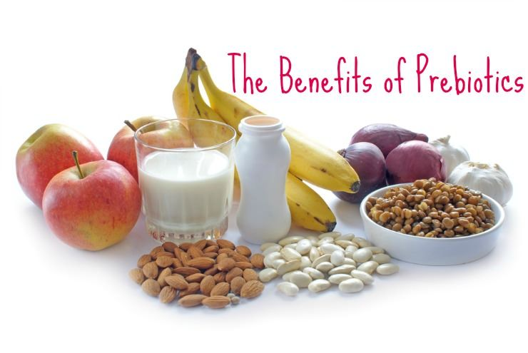 Prebiotics and How They Benefit Gut Health | Healthy Home Economist |  Prebiotics and probiotics, Prebiotics, Health healthy