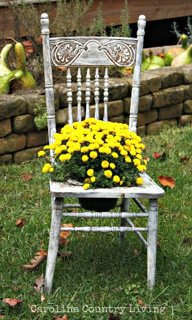 Carolina country living fall decorating around the house - Bepflanzter stuhl ...